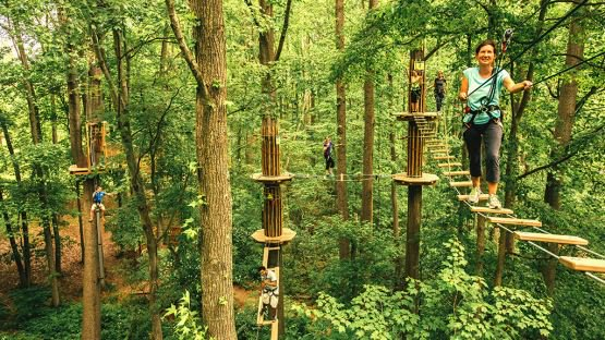 A family tackling a Go Ape Treetop Adventure course tackling multiple levels of aerial obstacles, tarzan swings and zip lines