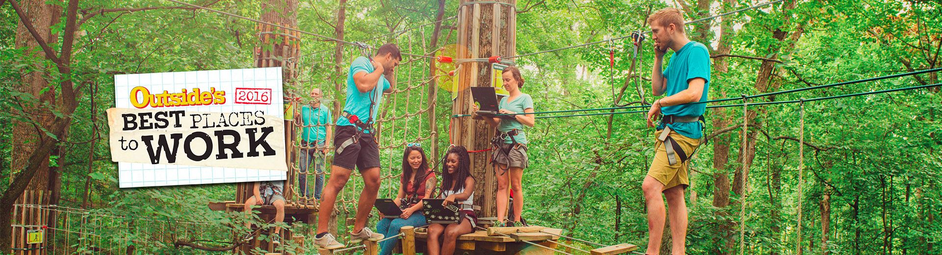 Go Ape employees performing job functions in the trees on a Go Ape Treetop Adventure course with obstacles and ziplines